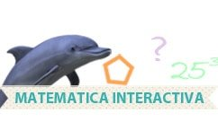 Client curatenie Matematica Interactiva Bucuresti